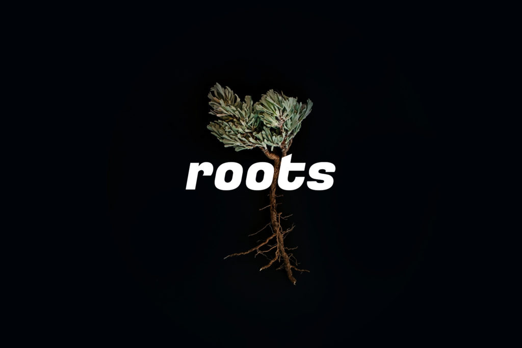 「roots」のイメージ