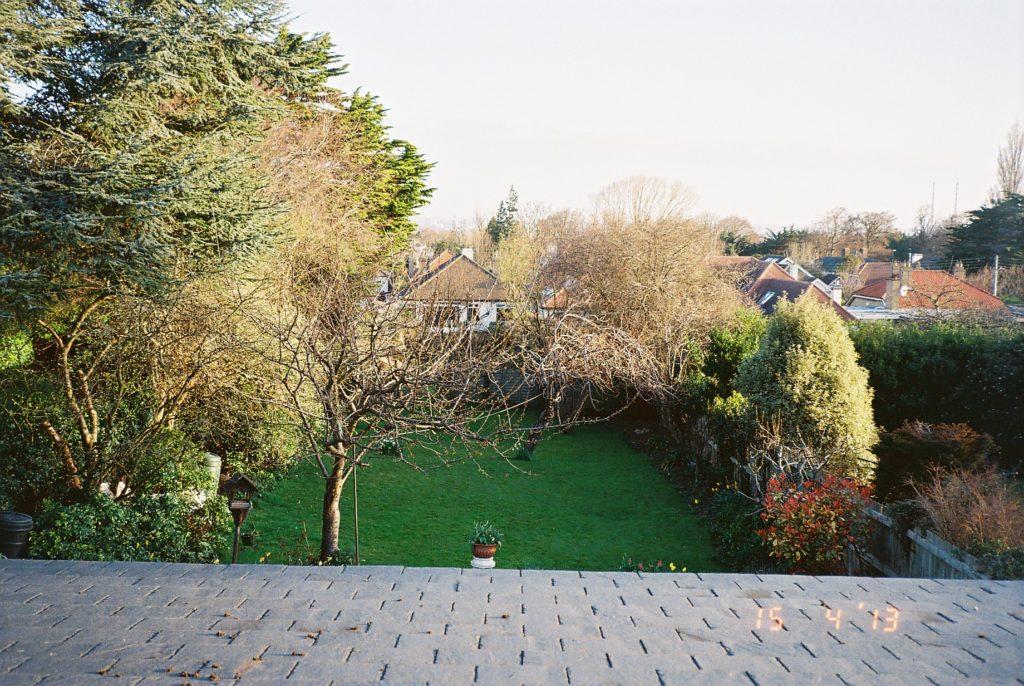 アイルランドの家の窓から見た庭