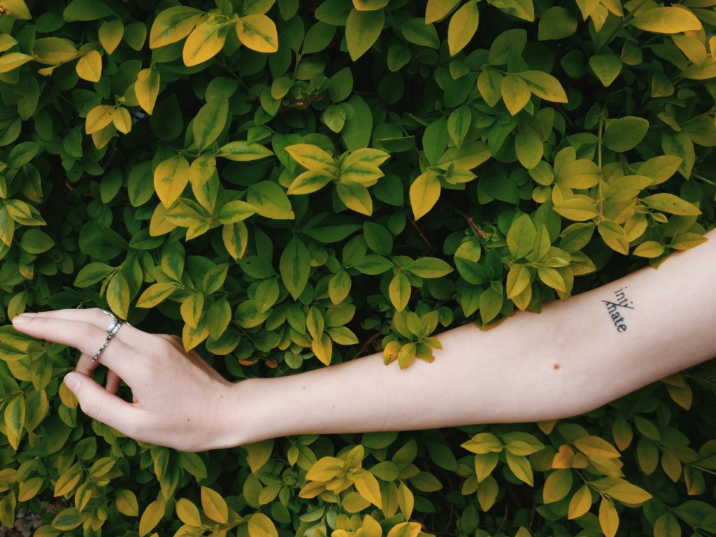 草木を触る女性の腕