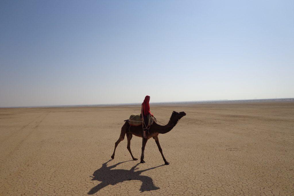 インドのタール砂漠